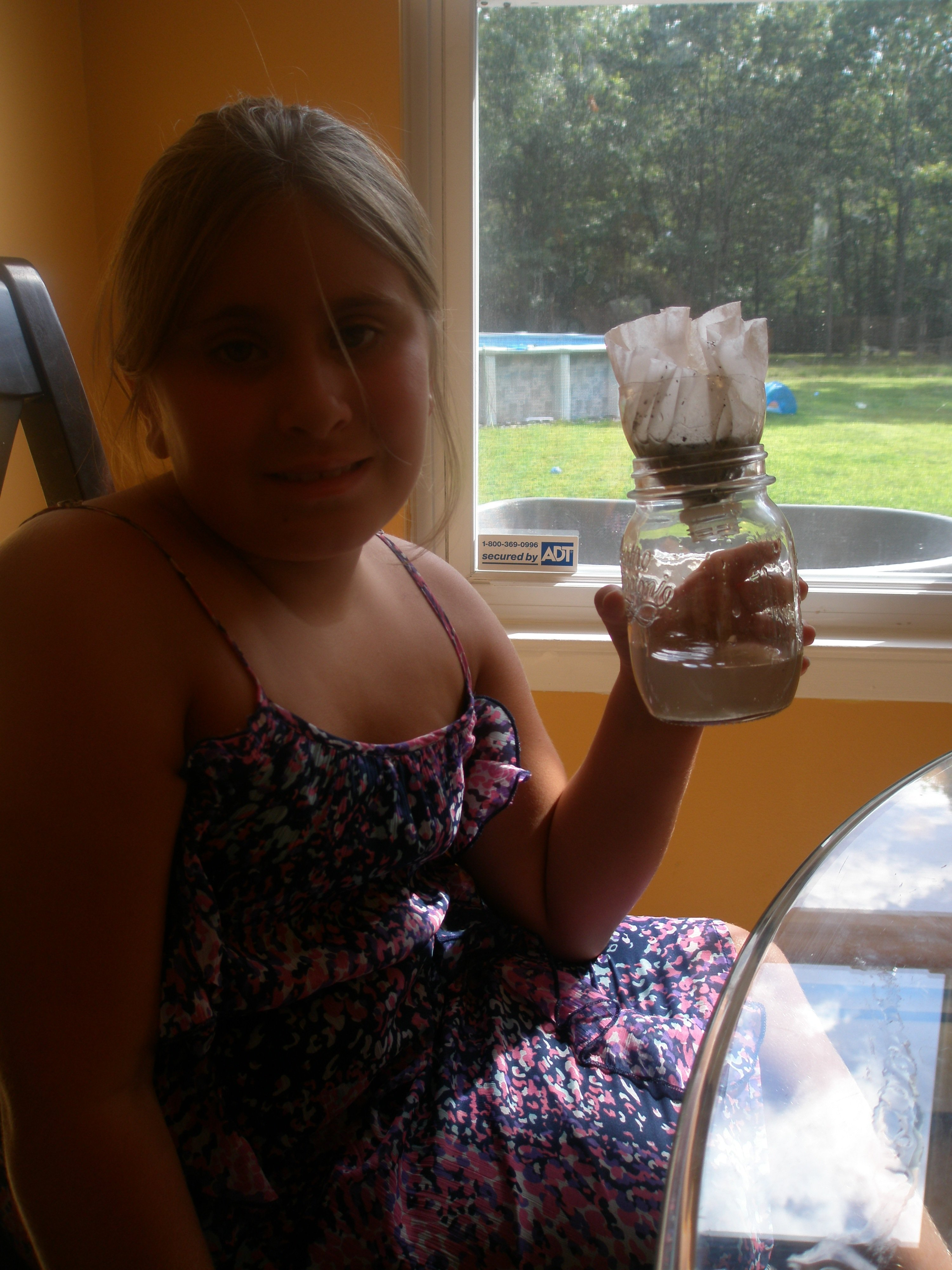 homemade water filter science project. What Happened? Homemade Water Filter Science Project